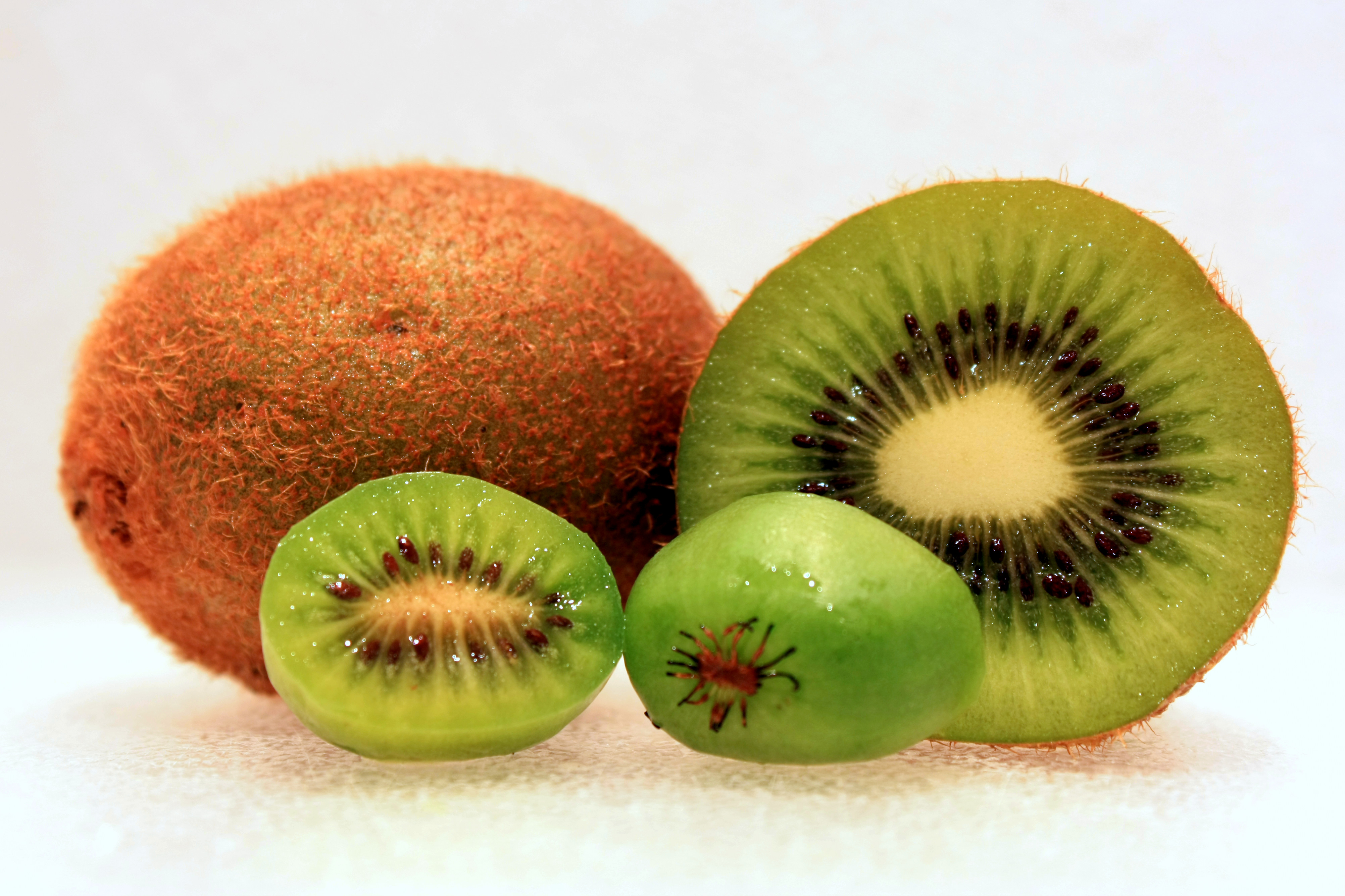 Hardy Kiwi is much smaller than commercial kiwi (Hayward)