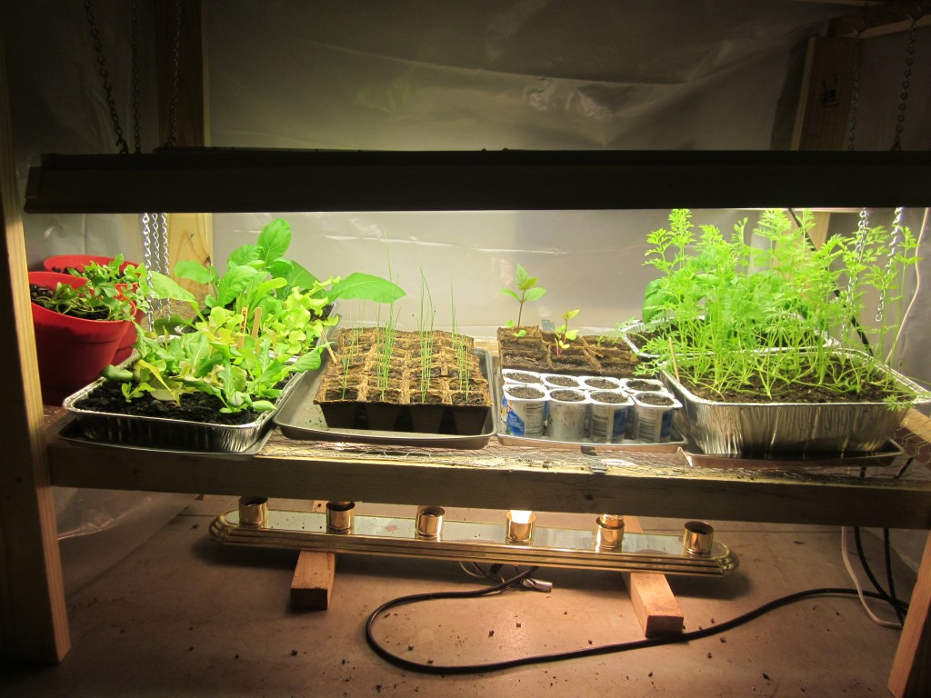 Grow Light - Side View - Full of Plants