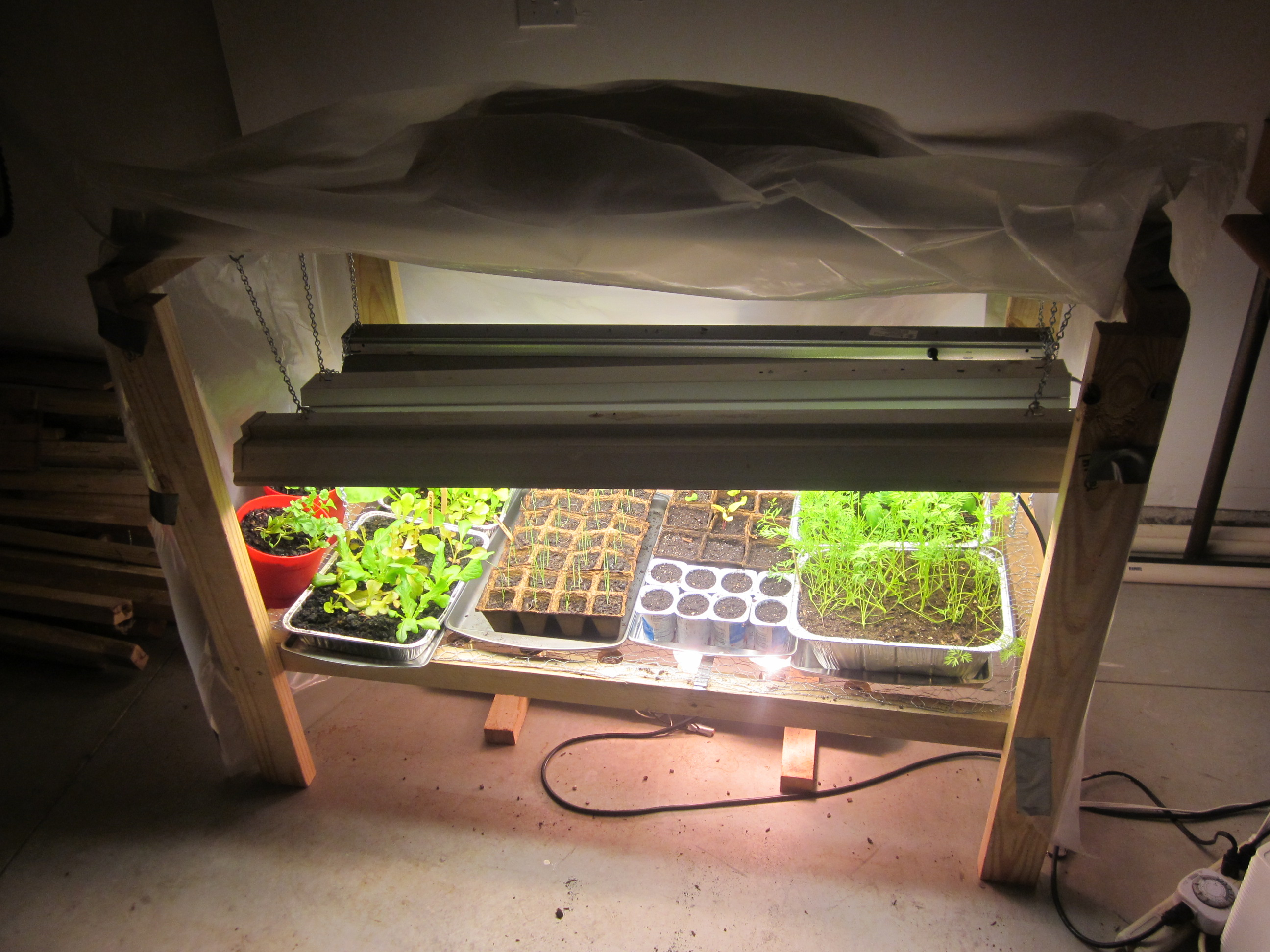 gardening overview plants an and light grow for the of indoor understanding basics lights