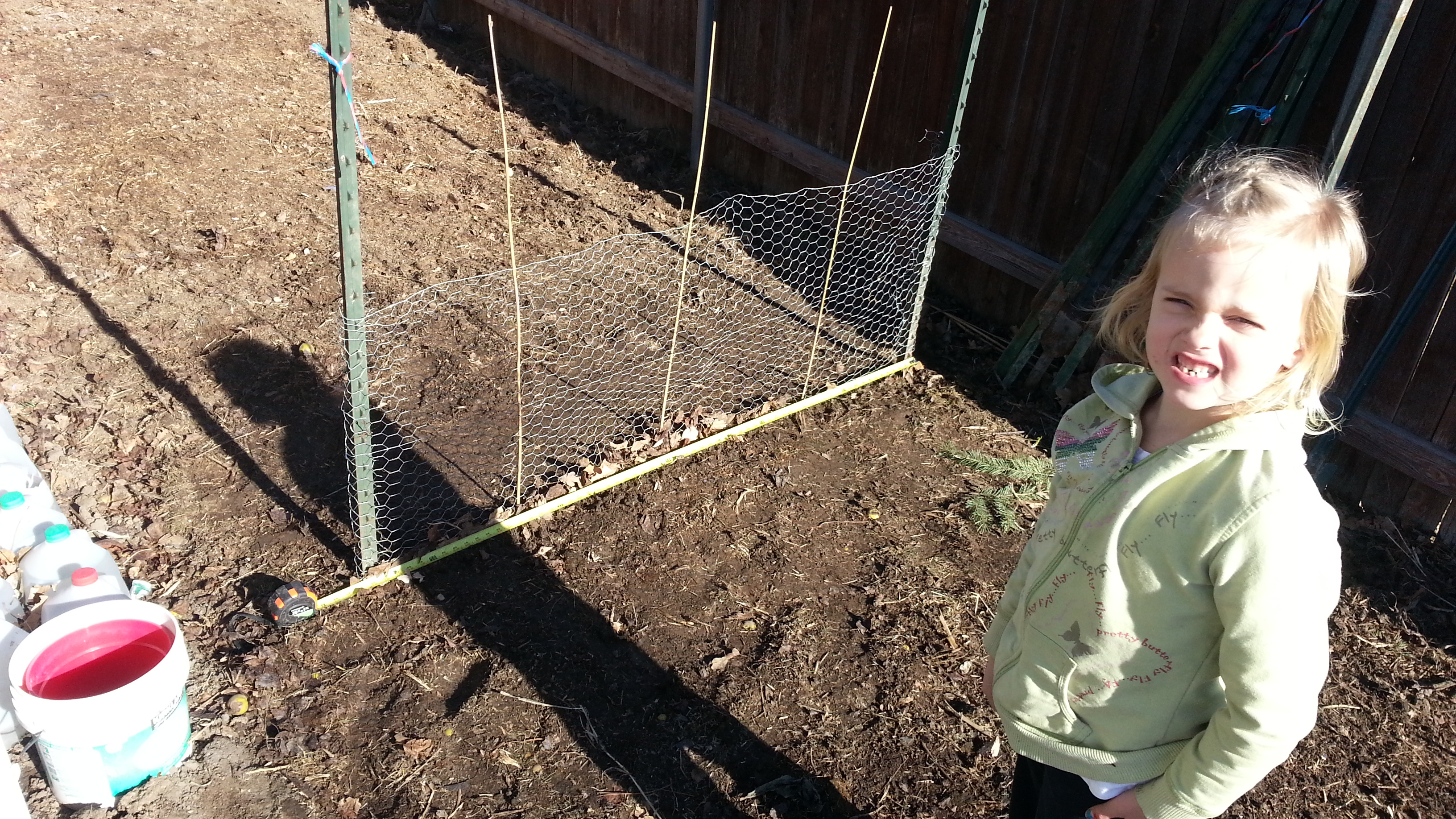 Pea Trellis with Measuring Tape and Paisley