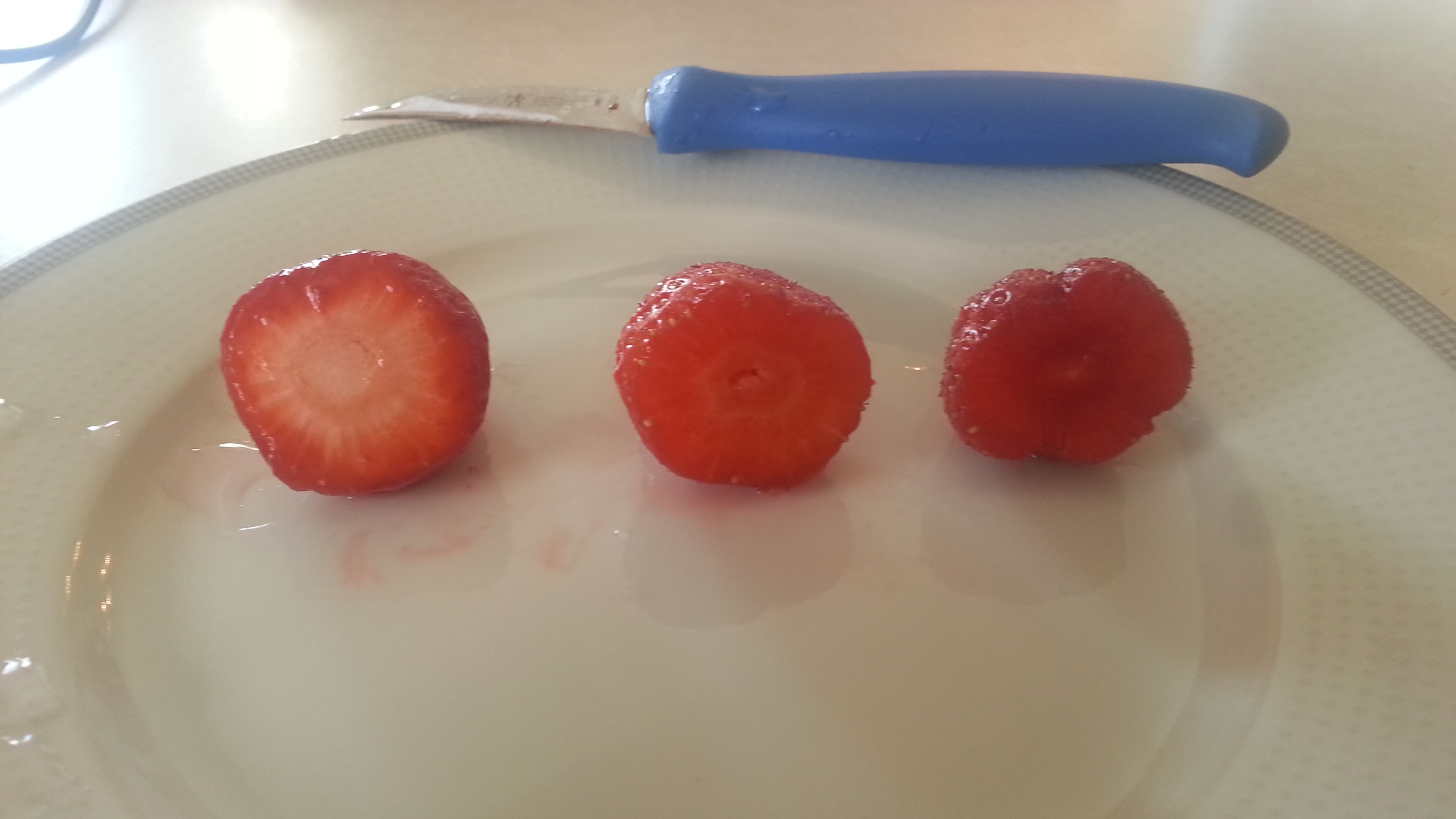 Homegrown vs Store Bought  Strawberries - Cross Cut